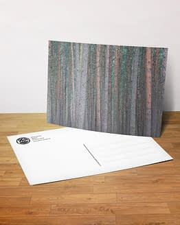 Postkarte - Wald
