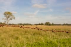 Wümmewiesen